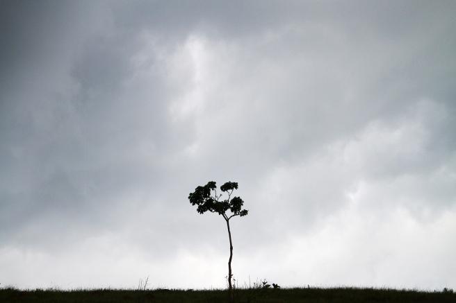 solitude | nublado